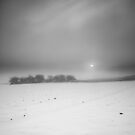 A Golden Promise Gets a Cold Reception BW by Andy Freer