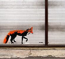 Urban Fox, by Stewy by Nicholas Coates
