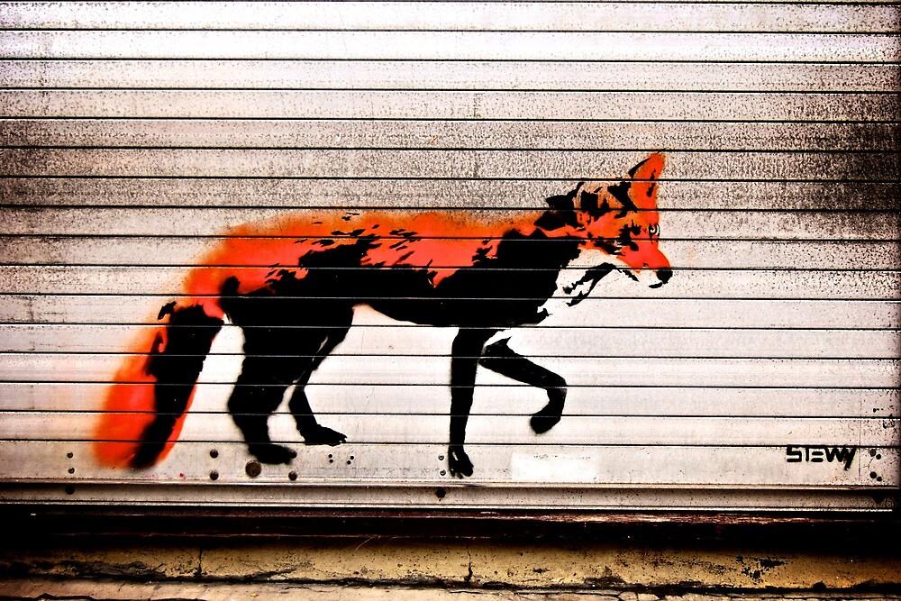 Urban Fox, by Stewy by Nicholas Coates