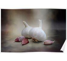 Smoked Smouldering Fresh Raw Garlic Bulbs and Cloves Poster