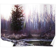 The Sun Shines over the Beaver Dam Poster