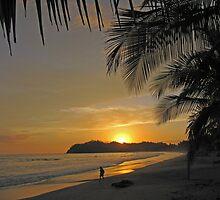Samara Costa Rica Sunset by Carol Bock