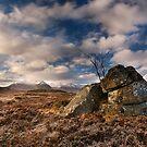 Rannoch Moor by Mark Smart