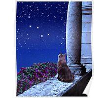 Cassiopeia Dreams Poster
