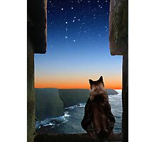 Pegasus over the Cliffs of Moher Photographic Print