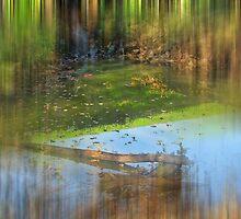 Streaks In The River by Linda Miller Gesualdo