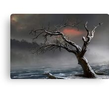 Ice Floes Canvas Print
