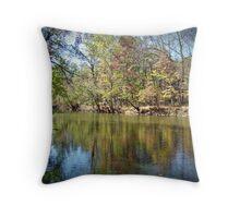 Autumn Reverie Throw Pillow