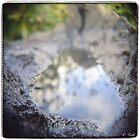 Oasis by Rebecca Tolk