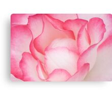 Raspberry Ice Canvas Print