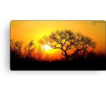Kruger Park Sunset Canvas Print