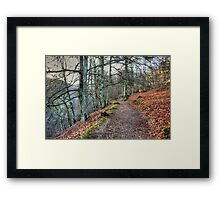 The Birks O' Aberfeldy Framed Print