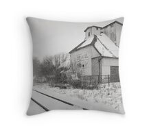 Southbound Snowbound Throw Pillow