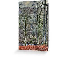 When all the leaves are gone Greeting Card
