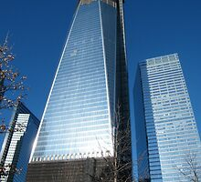 World Trade Center as Seen from 9/11 Memorial, New York by lenspiro