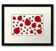 Many Ladybugs Shadows Framed Print