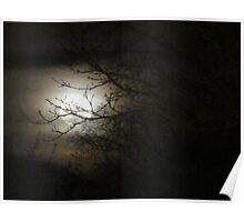 Once upon a Gothic full moon Poster