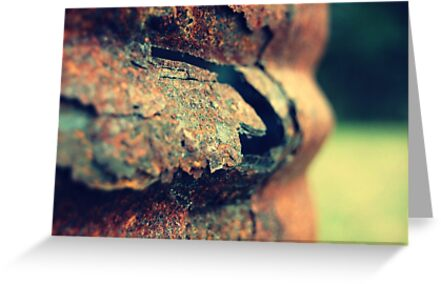 Rust by Jamie McCall