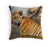 3 Month Old Bengal Tiger Cub Throw Pillow