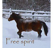 Free Spirit Photographic Print