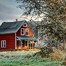 Modern Times on the Farm by Dale Lockwood