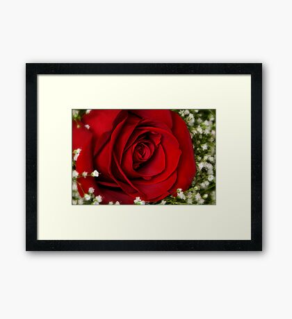 The Language of Love Framed Print