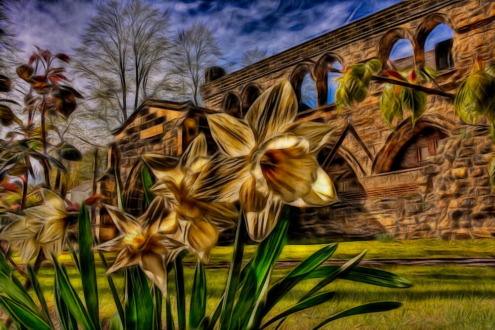 Fractalius Daffodils, All Saints by Nigel Butterfield