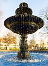 Fountain in the square by Scott Mitchell