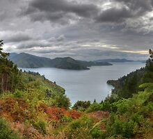 180 Degrees of Marlborough Sounds by Paul Duckett