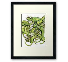 Chameleons Framed Print