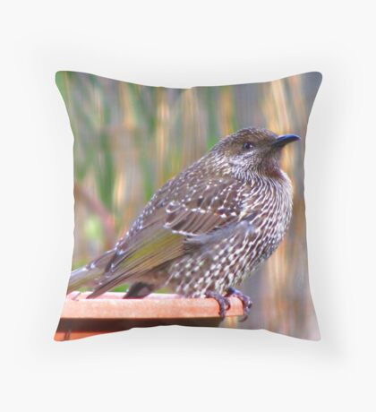 Juvenile Brush Wattlebird Throw Pillow