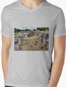 Lord's Mount Mens V-Neck T-Shirt