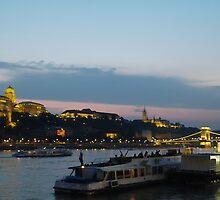 Danube at Night by karina5