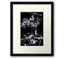 Autumn Falls Framed Print