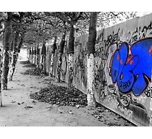 Brussels Wall, Trees, Graffiti Photographic Print