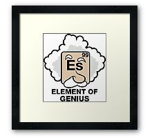 Einstein, Witty Geek Framed Print