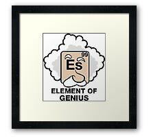 Einstein, Witty Geek Framed Print