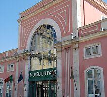 Fado museum in Lisbon by luissantos84