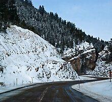 The Helmville Highway by Bryan D. Spellman