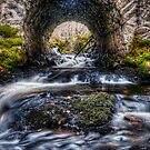 The Old Bridge by Fraser Ross