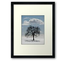 Backlit Tree  Framed Print
