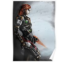 Our Commander Shepard Poster