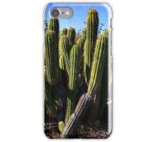 """Desert Plants - The Wild Bunch"" iPhone Case/Skin"