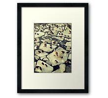 Birds on Ice II Framed Print