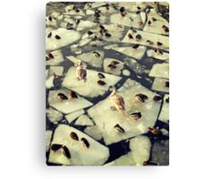 Birds on Ice II Canvas Print