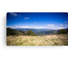 View from Barrinton Forrest Rd, Barrinton Tops Canvas Print