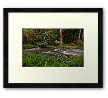 Manning River, Barrinton Tops Framed Print