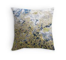 Waters above and Waters below Throw Pillow