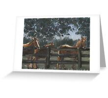 Figaro, Chico, and Bella Greeting Card