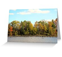 Green Lane Reservoir - East Greenville PA  - USA Greeting Card